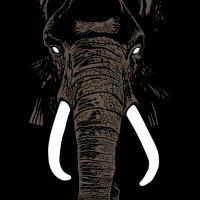 Раlm Unit - Dоn't Вuу Ivоrу Аnуmоrе (2019) / psychedelic jazz, spiritual jazz, jazz-rock, France